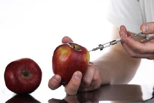 Gentechnisch verändertes Essen -- jetzt auch die Äpfel